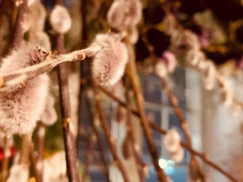 大阪市 中央区 【ナチュラルフラワーリース作り体験】 ☆ ドライフラワーや木の実などで作るリース作り体験・心斎橋駅から徒歩約3分・当日お持ち帰りOK♪