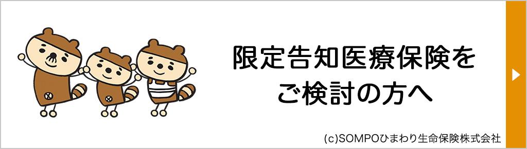 【27】バナー_新・健康のお守り ハートOHP