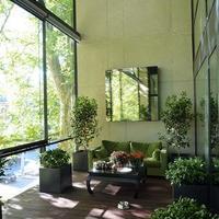 大都市横浜におすすめの観葉植物と購入方法まとめ