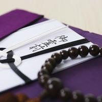 胡蝶蘭とお葬式にまつわる3つのコト