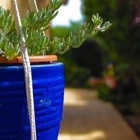 屋外でも使える鉢カバー!屋外用素材とおすすめ観葉植物コラボ