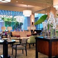 胡蝶蘭をホテルに贈る際の注意点まとめ