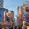 大阪近辺で不要な胡蝶蘭を買取りしてもらうには?