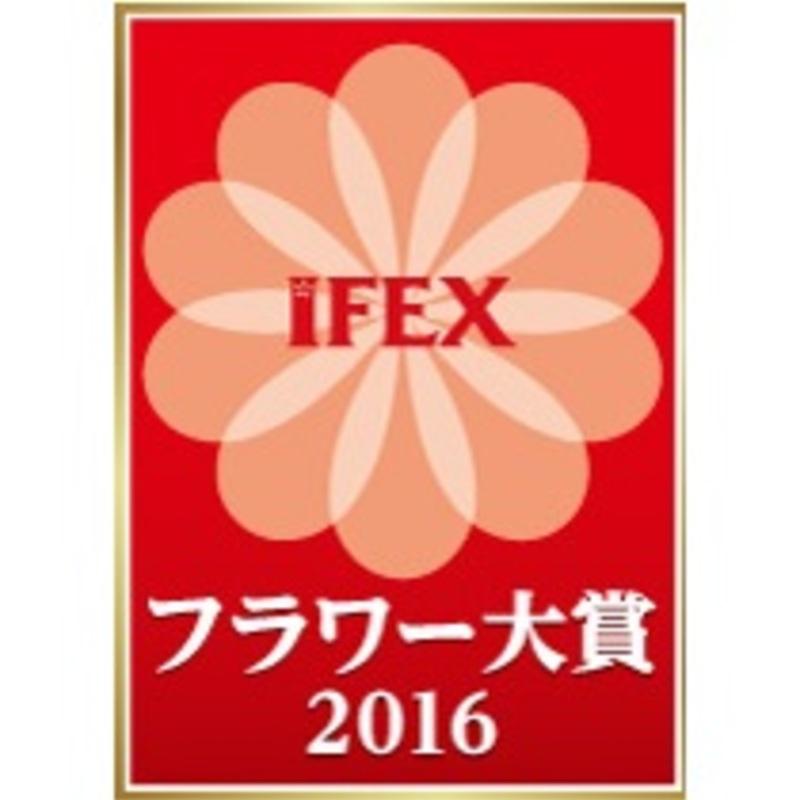 Ifex2016sikaku