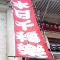 【相場・マナー】千秋楽祝いは胡蝶蘭がおすすめ