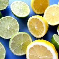 爽やかな観葉植物ドラセナ ワーネッキー レモンライムを通販で楽しもう!