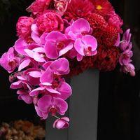 切り花は贈り物にも大活躍!魅力を徹底解説