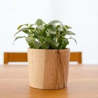 木製鉢カバーでインテリアを模様替え!