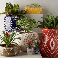 おしゃれな鉢カバーを観葉植物に!おすすめ12選をご紹介