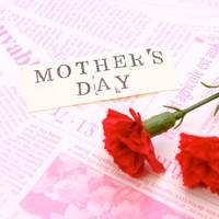 母の日にはピンクの胡蝶蘭を!
