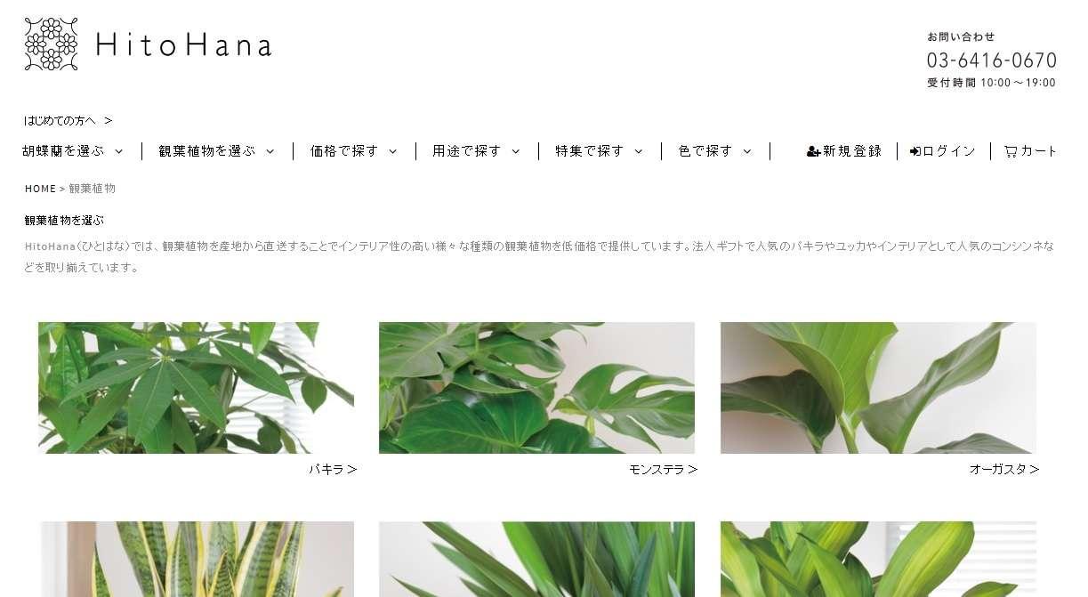 Hitohana green