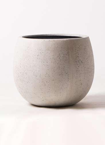 鉢カバー テラニアス ローバルーン アンティーク 8号鉢用 ホワイト