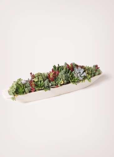 多肉植物 寄せ植え ポリストーン 舟形 ショート
