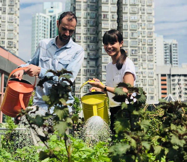 Rooftop Republic launches its Community Urban Farming Membership Programme at Sheung Wan!