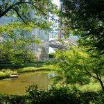 都市こそ生物進化のフロンティア!?——進化生態学者・岸由二に聞く、未来の生物多様性都市