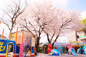 中台幼稚園の求人画像
