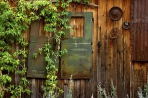 借主の過失による費用負担も残存価値を考慮