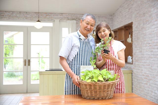 自分たちで作った野菜の成長を見守るのも楽しそうですね