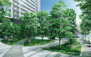 津田沼ザ・タワーの植栽(共用スペース)