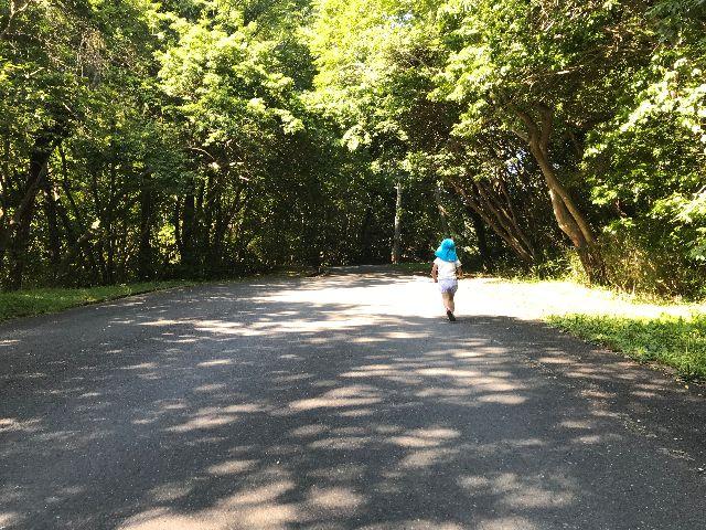 幼稚園への通学路の様子(筆者撮影)