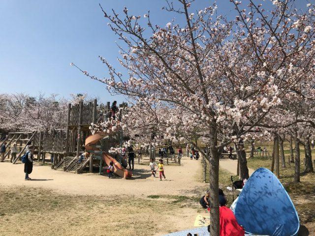近所の公園2