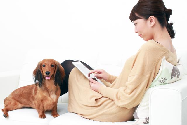 犬と一緒に暮らす物件探しのポイント