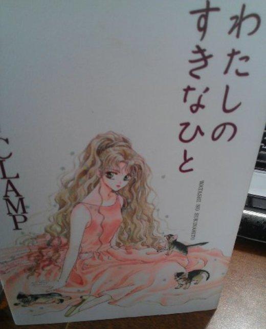 わたしのすきなひと (Young rose comics DX)