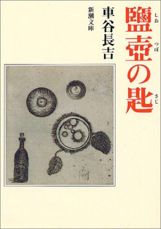 塩壷の匙 (新潮文庫)