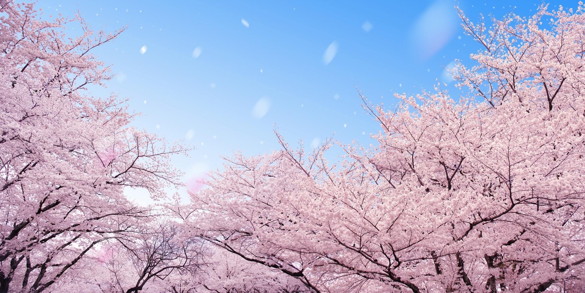 青空文庫で無料で読める坂口安吾の魅力が分かる作品おすすめ5選!