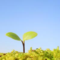 社会を良くするNPOについて学ぶための4冊
