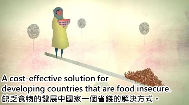3.food insecure_cht