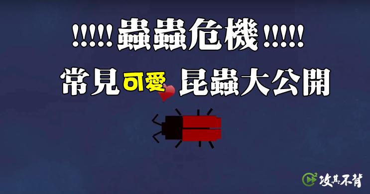 昆蟲 英文