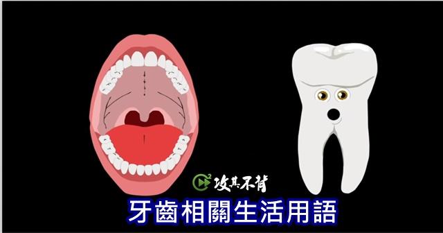 牙齒 英文