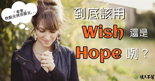 wish 用法