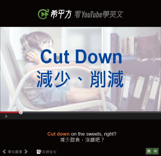 「減少、削減」- Cut Down