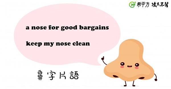 【趣味英文】『a nose for something』是什麼意思?學學各種鼻子片語!