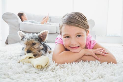 アパートで犬を飼い始めたい人へ、簡単な4つのステップ