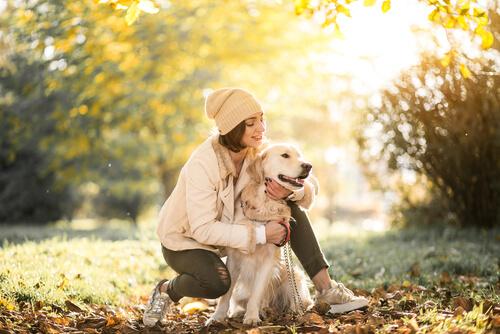 犬が散歩で歩かない!急に散歩を嫌がる、4つの理由