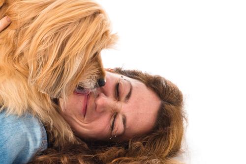 犬からのキスは愛情表現だった!犬があなたの口をなめる本当の理由