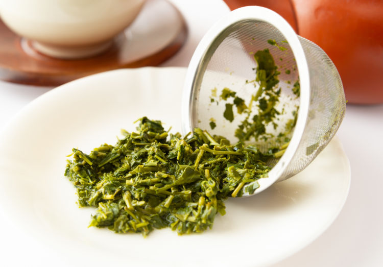 犬が「緑茶」を誤飲した場合の致死量は?(小型犬・中型犬・大型犬)