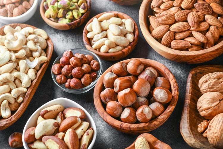 【獣医師監修】犬がナッツ類を食べても大丈夫?マカデミアナッツは食べてはダメ!中毒に注意!