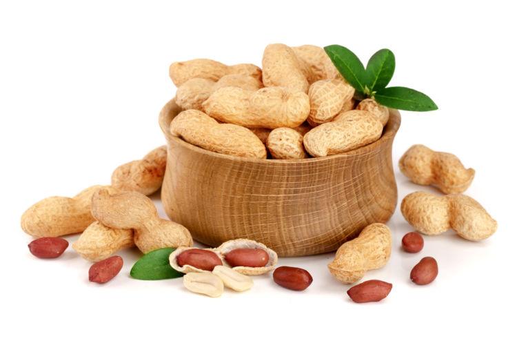 犬はピーナッツ(落花生)を食べても大丈夫!