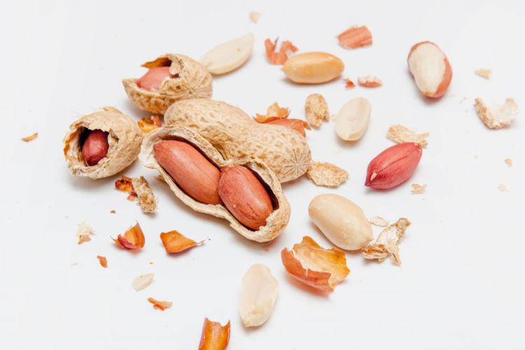 注意点②「ピーナッツは高たんぱく質、腎臓病には注意」