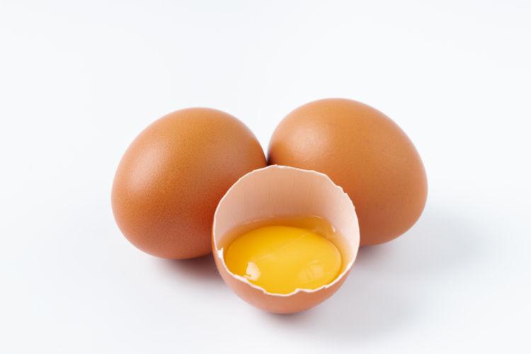犬が卵を食べる時の量は?