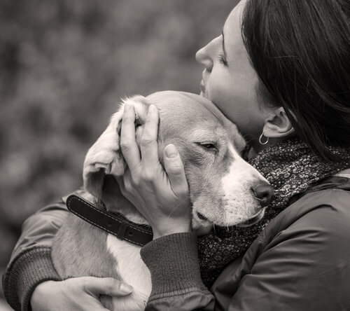 死に際を見せたくない犬たち。犬が死ぬ前に飼い主の側から離れる理由