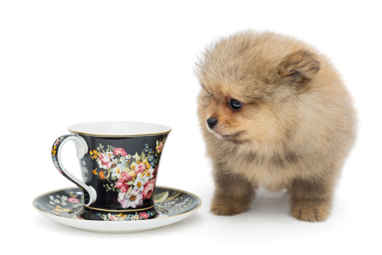 カフェイン中毒になる危険性がある摂取量は?