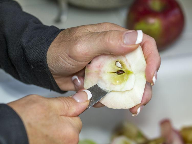 りんごジュースを与える際の注意点①「種はしっかり取り除く」