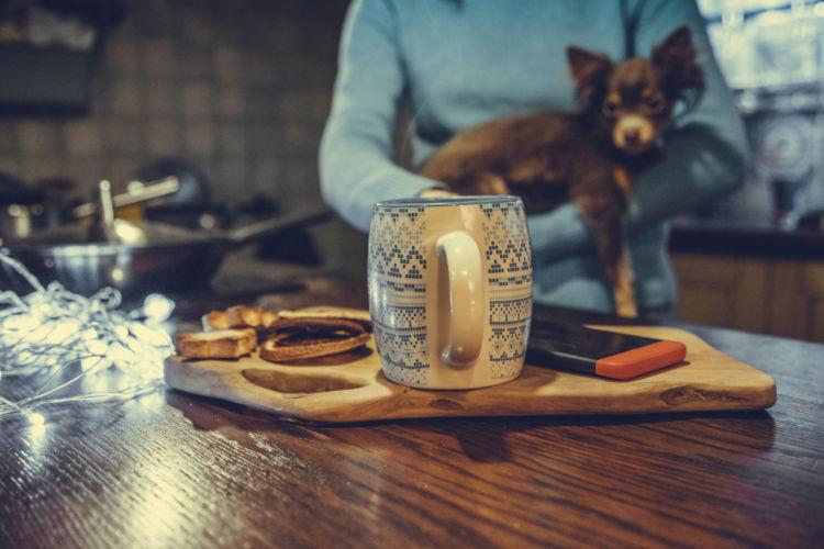 犬がカフェイン入りのお茶を誤飲した時の対処法は?