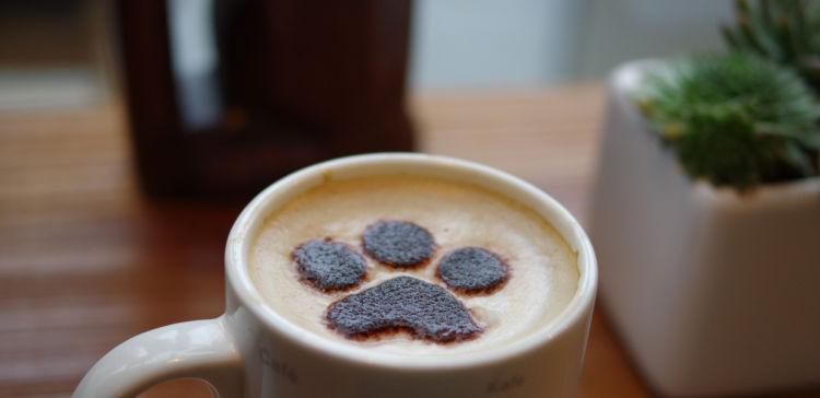 犬に「カフェインレスコーヒー」を飲ませても大丈夫?