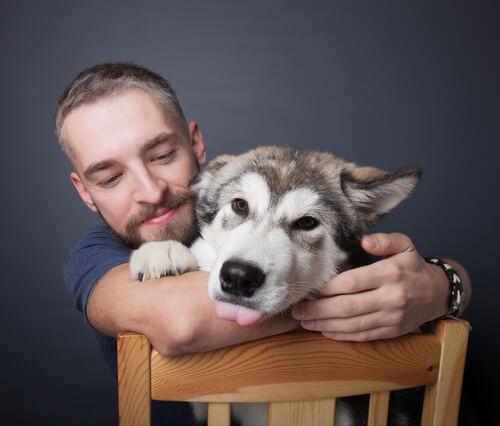 どうして似てくるの?愛犬と飼い主の性格が似るのには理由があった!